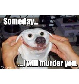 Someday I Will Murder You Dog Magnet