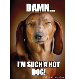 Damn I'm Such A Hotdog Dog Magnet