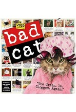 Bad Cat Calendar 2020