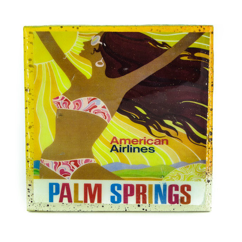 Palm Springs American Airlines Coaster