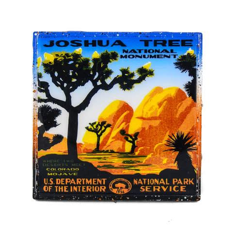 Joshua Tree Coaster