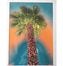 Tall Palm Orange/Blue Sky Matted- S