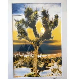 Joshua Tree Yellow and Blue Sky Matted- S