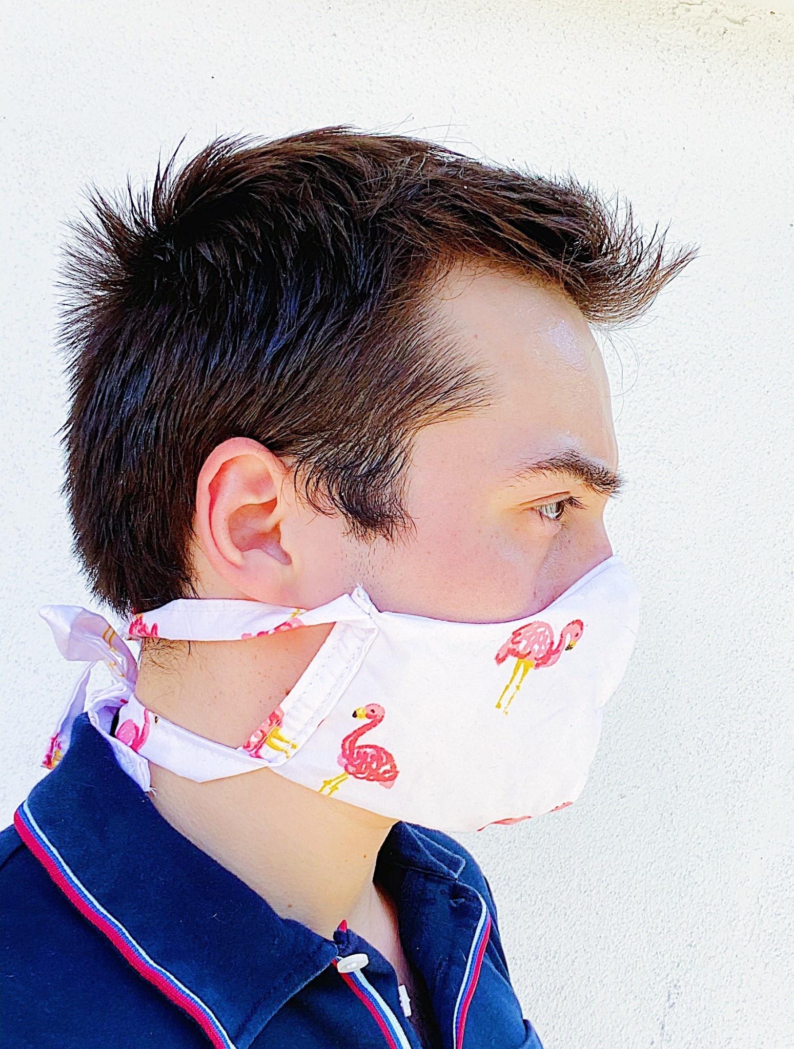 Fashion Face Masks Flamingo - Adult