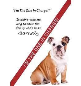 """I'm the One In Charge"" Leash"