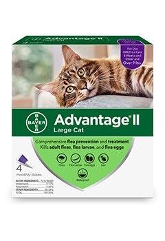 Advantage II Cat 9# + large