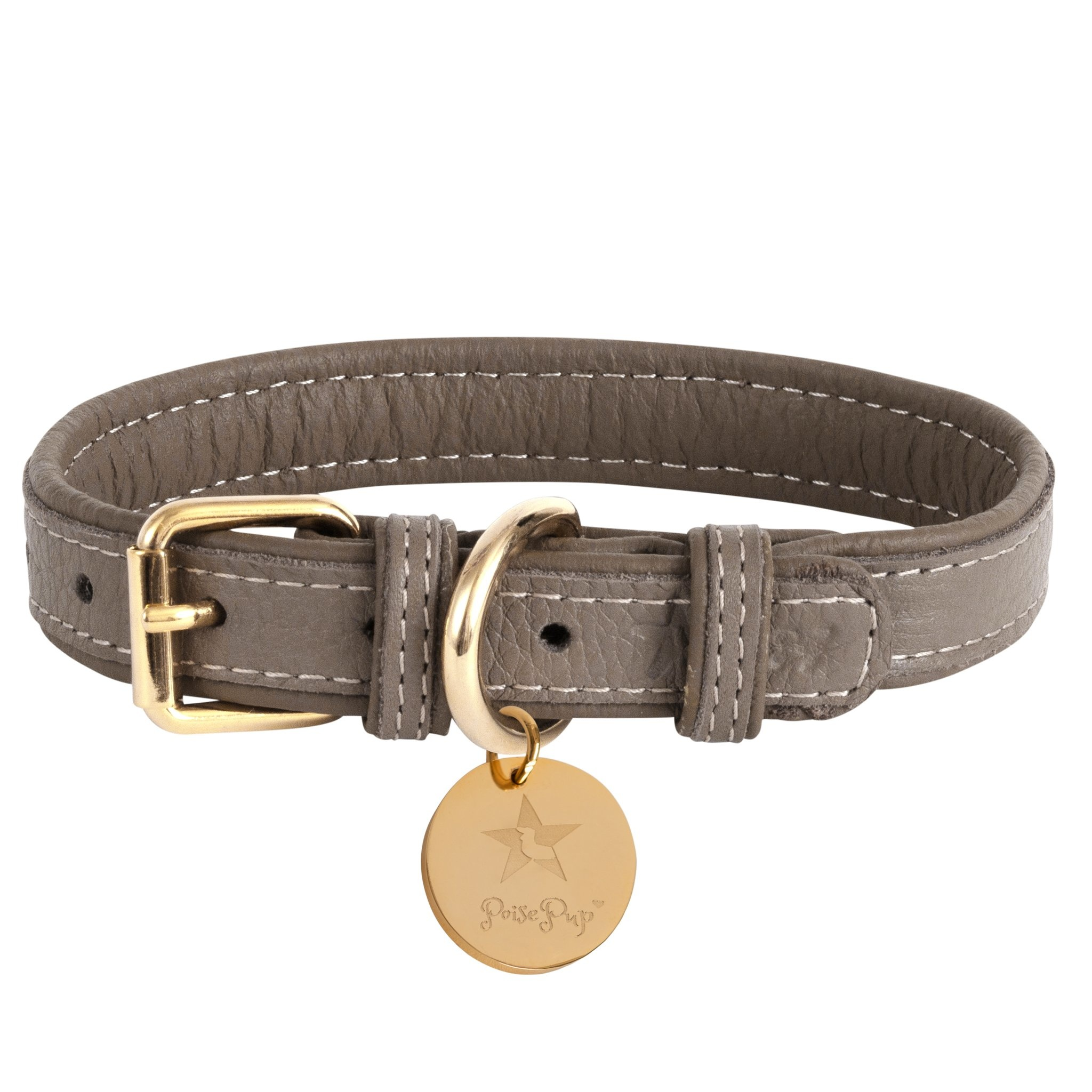 Poise Pup Collar Desert Mint Leather