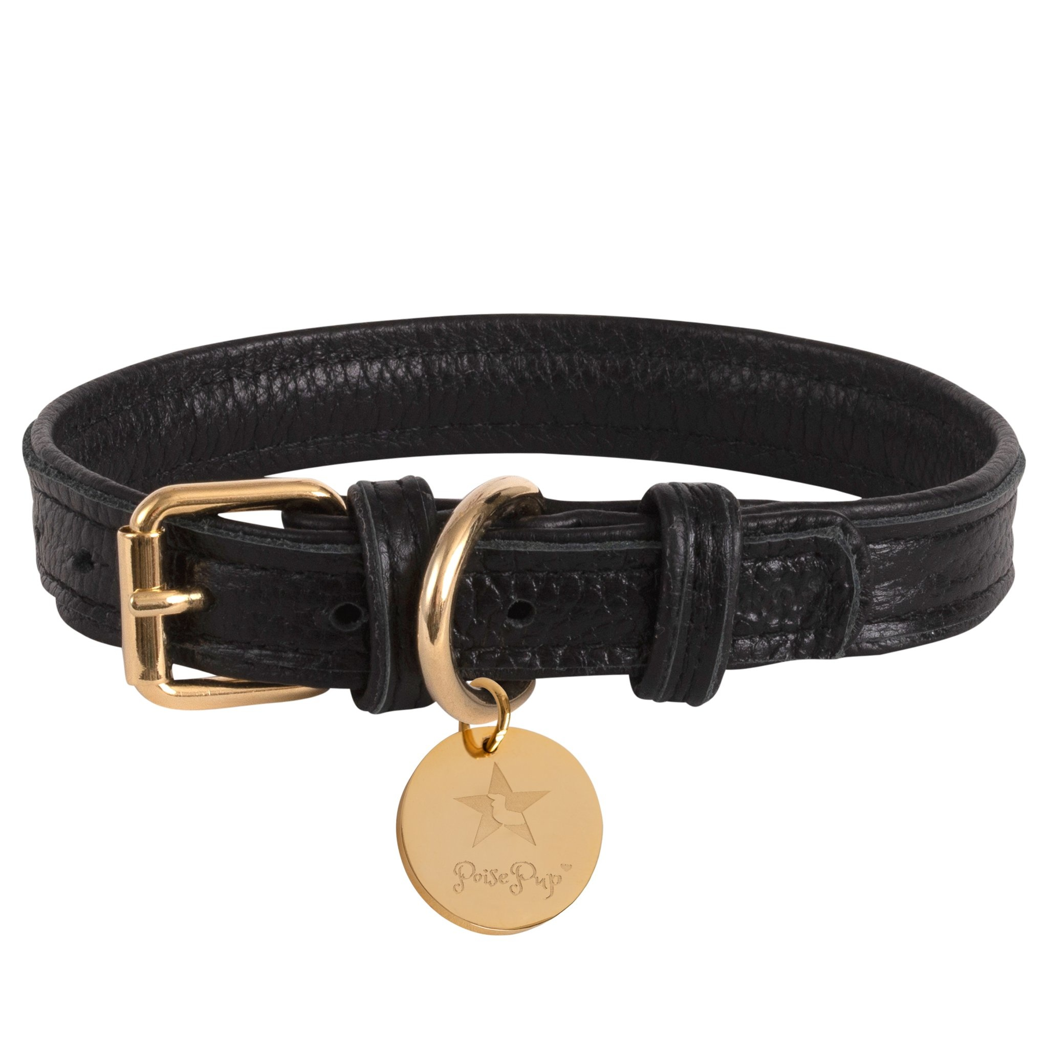 Poise Pup Collar Dark Night Leather