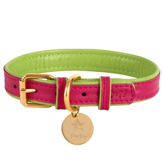 Poise Pup Collar Candy Swirl Leather