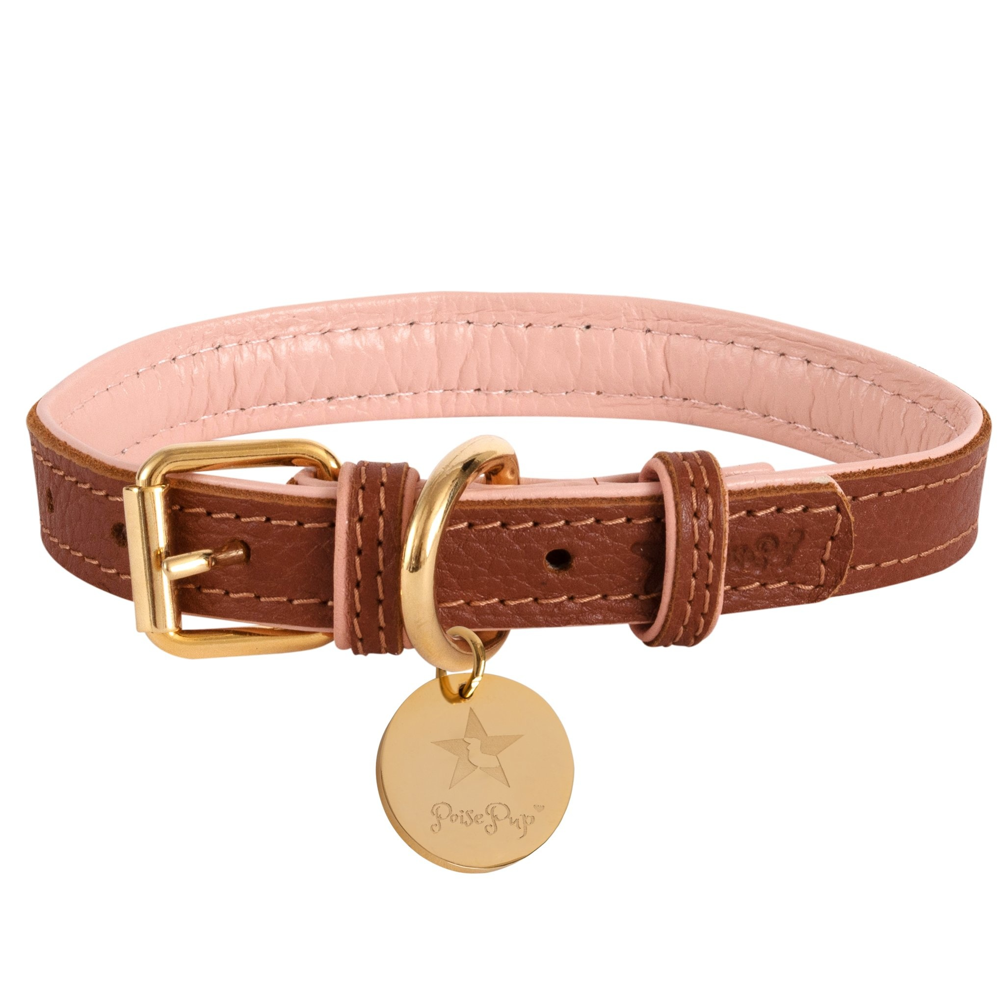 Poise Pup Collar Bella Rose Leather