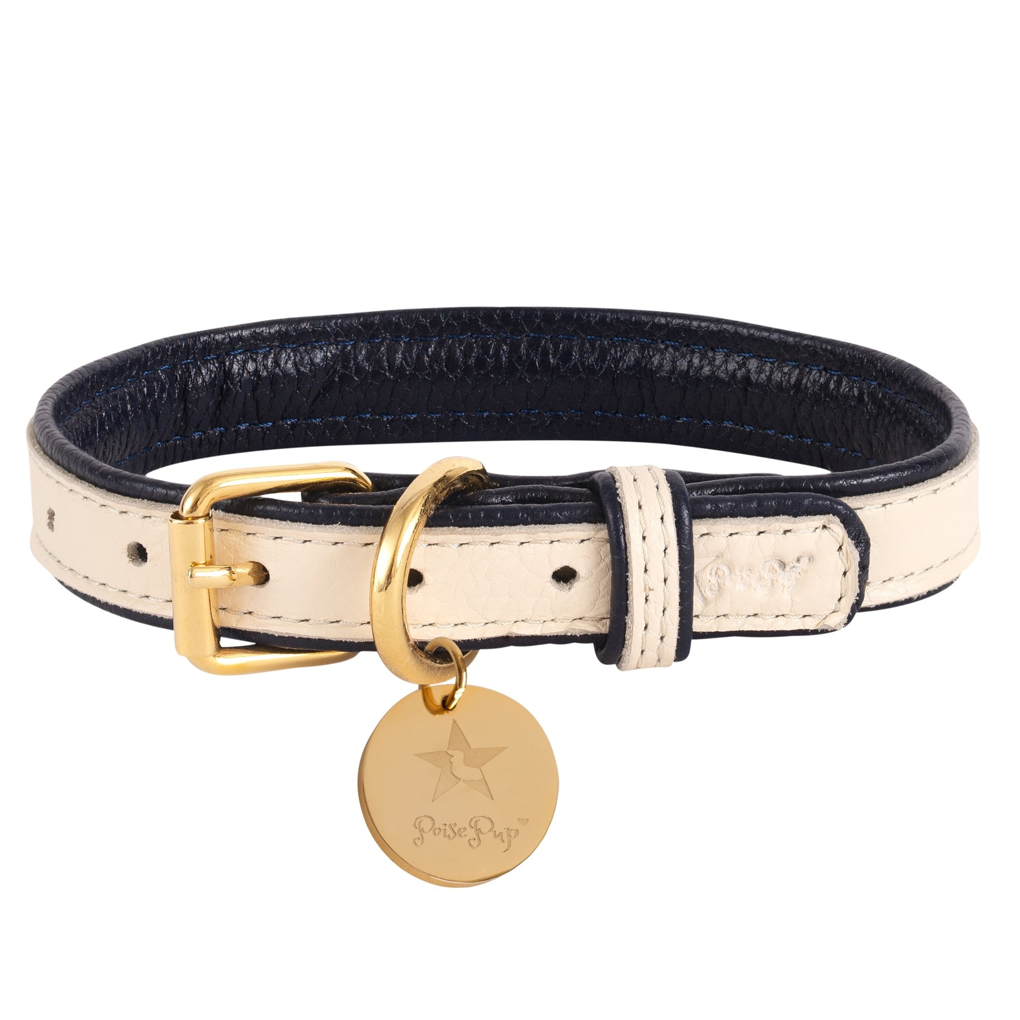 Poise Pup Collar Hot Marine Leather