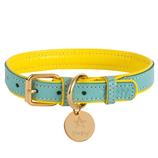 Poise Pup Collar Sunshine Babe Leather