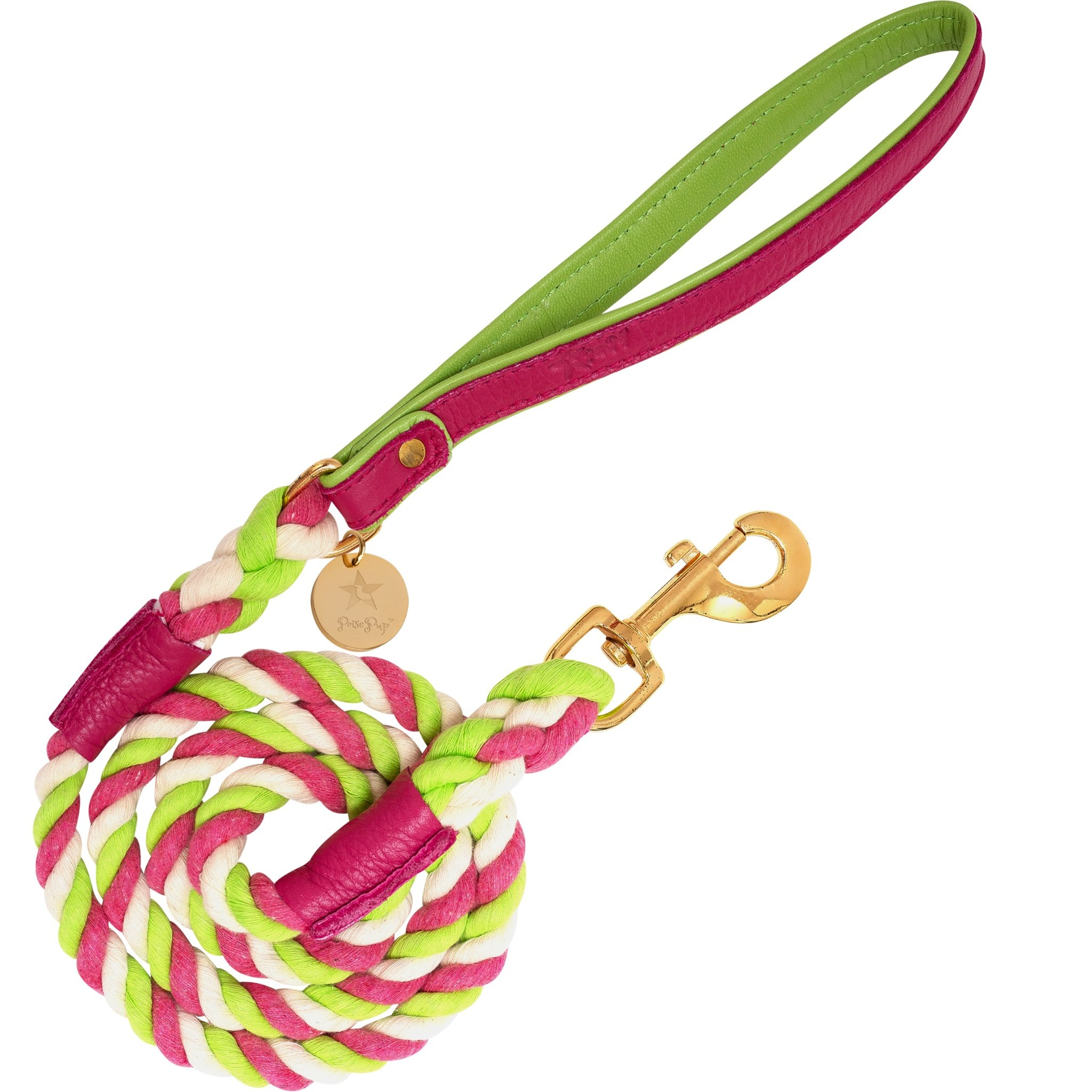 Poise Pup Rope Leash Candy Swirl w Leather Handle