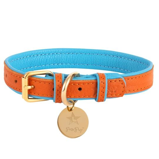 Poise Pup Collar Vibrant Sunset Leather