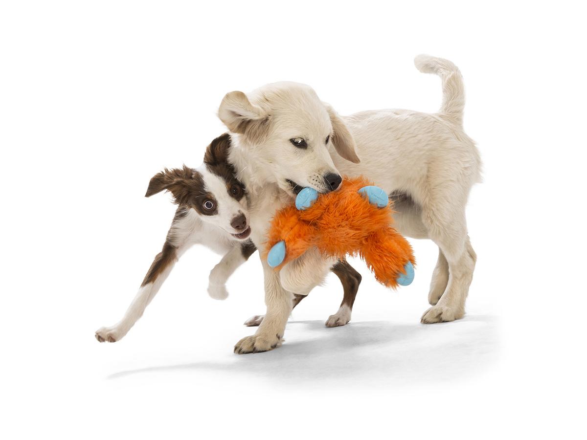 West Paw Dog Toy Jefferson Orange Fur