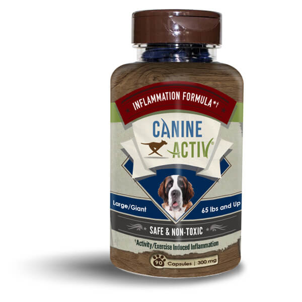 Vireo Canine Activ