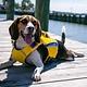 Chesapeake Bay Dog Company Bay Dog Monterey Bay Life Jacket