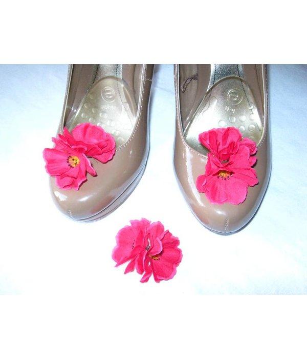 Pink Lolita Larkspur Flowers