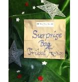 Tribal Fusion Belly Dance Surprise Bag/ Grab Bag