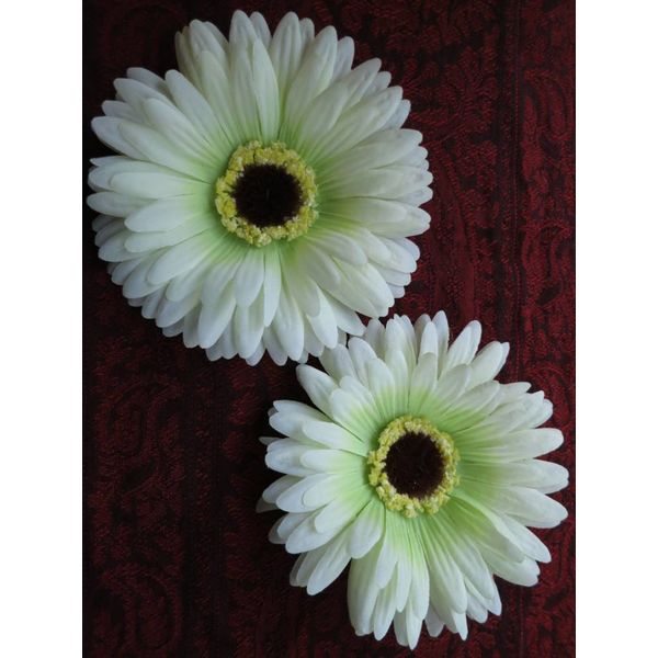 Cream-Green Gerbera 2 x