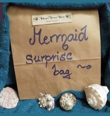 Mermaid Surprise Bag