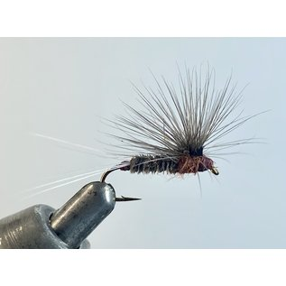Stacked Hackle Brown Bug