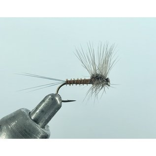 Brown Bug Spinner Stacked Hackle