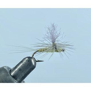 River God Olive Parachute