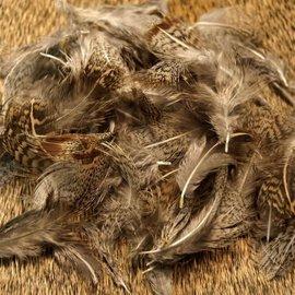 Nature's Spirit Nature's Spirit Premium Partridge