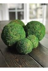 "Accent Decor Moss Sphere 4"""