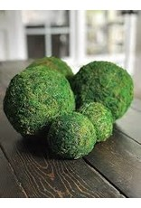 Accent Decor Moss Sphere 6""