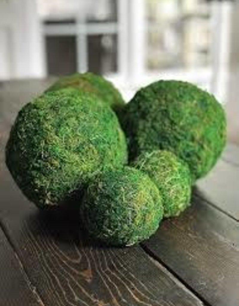 "Accent Decor Moss Sphere 6"""