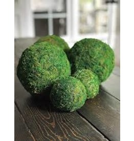 Accent Decor Moss Sphere 8""