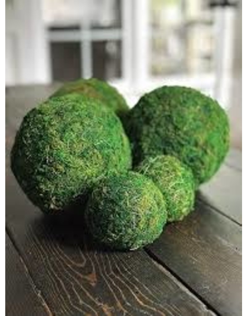 "Accent Decor Moss Sphere 8"""