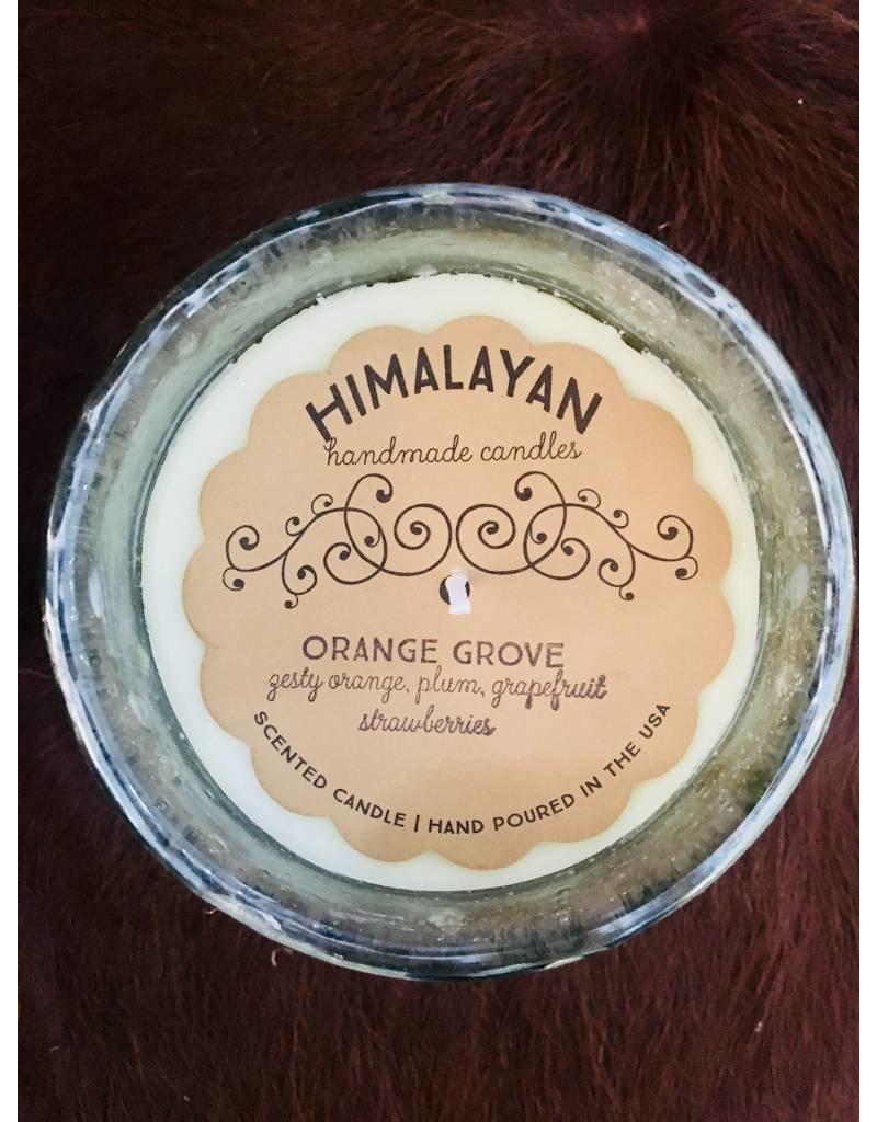 Himalayan Mossy Green-Orange Grove