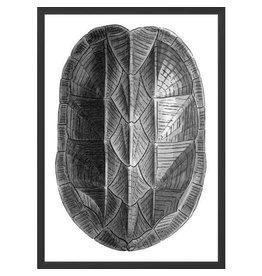 Wendover Art Turtle Shell Metallic 1
