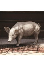 ParkHill Estate Stone Routing Pig