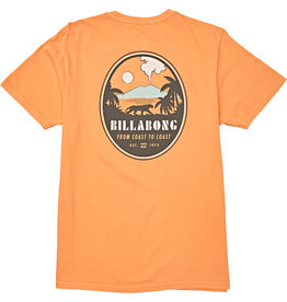 Billabong Billabong Volcano T-Shirt