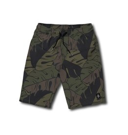 Volcom Volcom Boys Jungle Trunks
