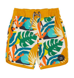 Feather 4 Arrow Feather 4 Arrow Tropics Scallop Boardshort