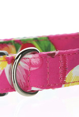 Salty Paws Salty Paws Hawaiian Print Dog Collar Pink