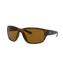 Ray Ban Ray-Ban Havana w/ Brown