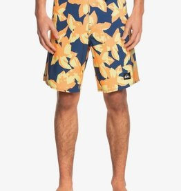 """Quiksilver Quiksilver Highlite Arch 19"""" Boardshorts"""