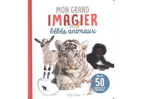 Mon grand imagier des bébés animaux