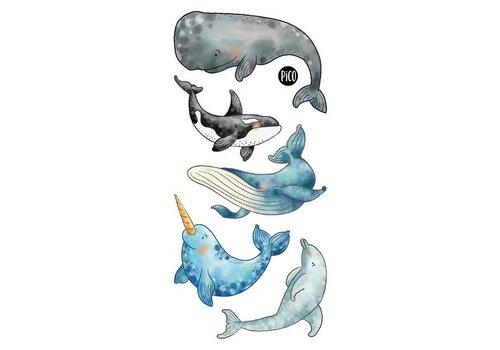 pico Tatouages temporaires - Les belles baleines