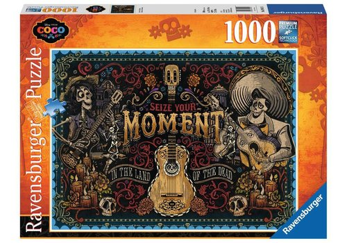 Ravensburger Seize Your Moment (1000 pc Puzzle)