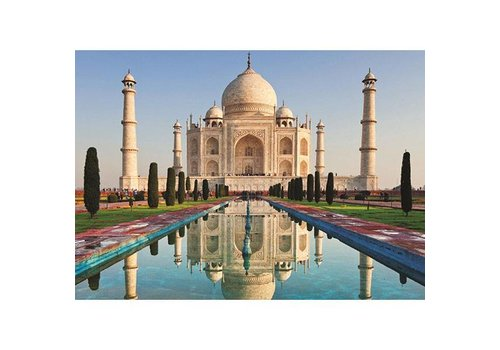 Jumbo 1000MC, TAJ MAHAL, INDIA