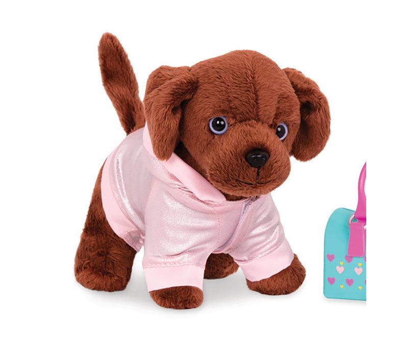 Ensemble Beauty Paw pour chien OG