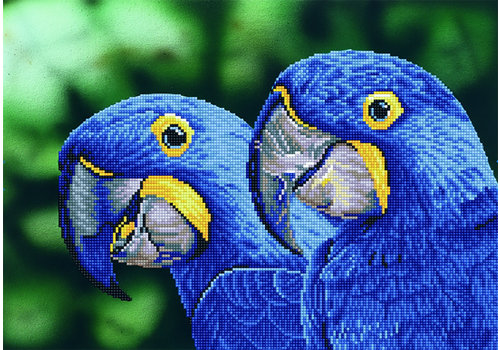 Diamond Dotz Blue Hyacinth Macaws Diamond Painting