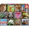 Casse-tête 1000 pièces Collage d'animaux sauvages
